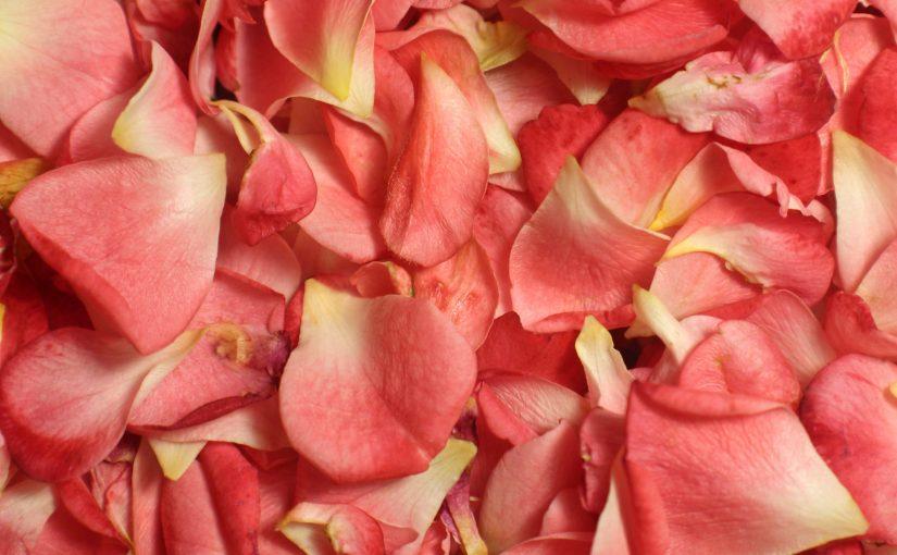 Tónico de rosas para cuidar el cutis