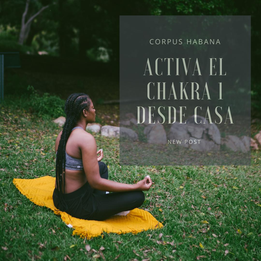 El Chakra Raíz. Activa tu primer centro de energía desde casa